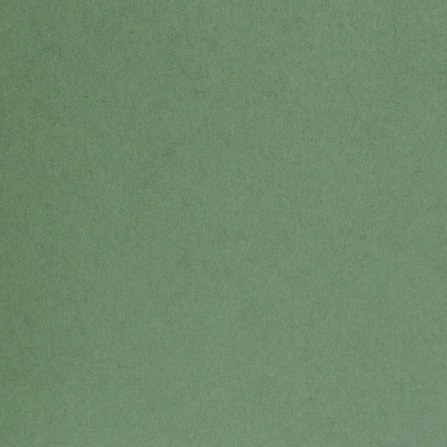 olive green matte classic cardstock